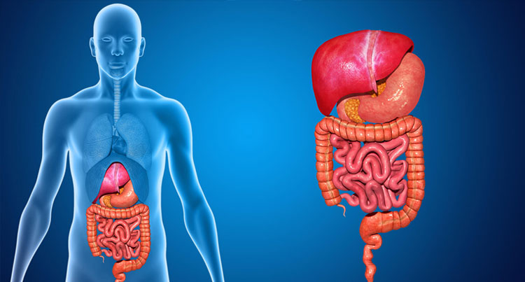 gastroenterologist in gurgaon